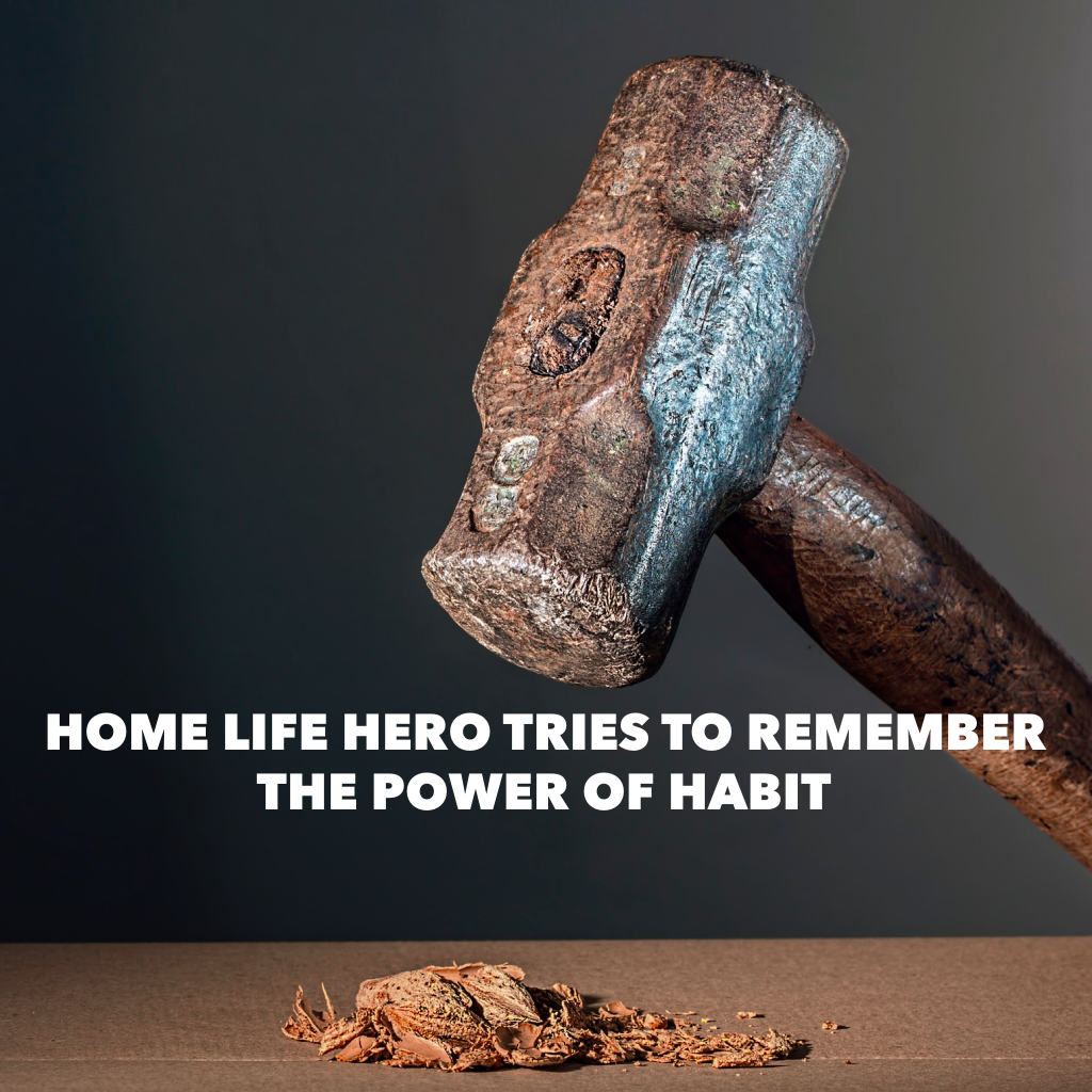 Home Life Hero tries to remember The Power of Habit